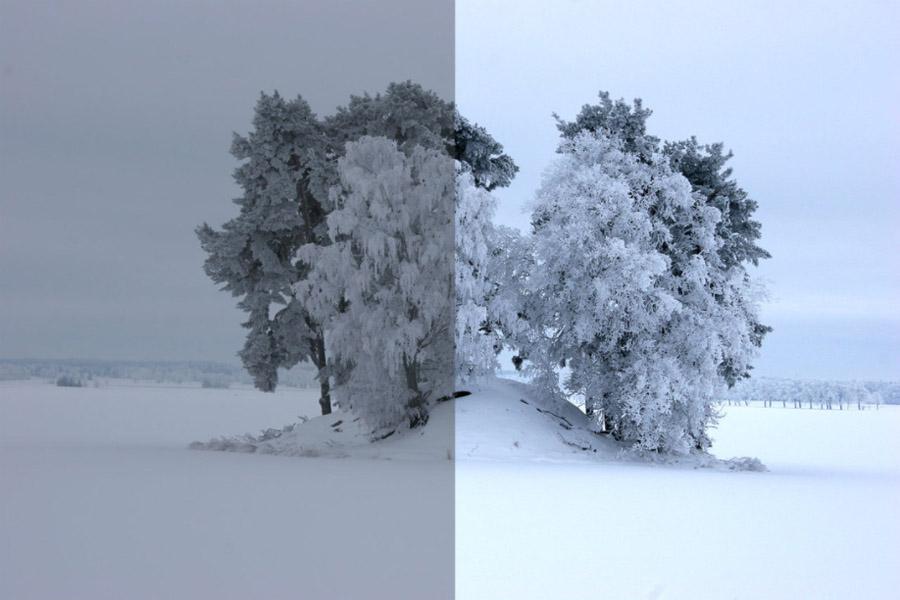 Boom met sneeuw (voor & na Photoshop)
