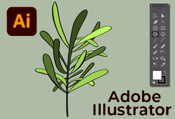 online cursus: Adobe Illustrator